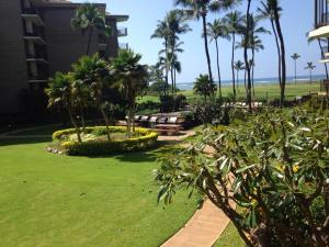 View from my lanai in Maui (taken during lunch one day during holiday in Paradisse).